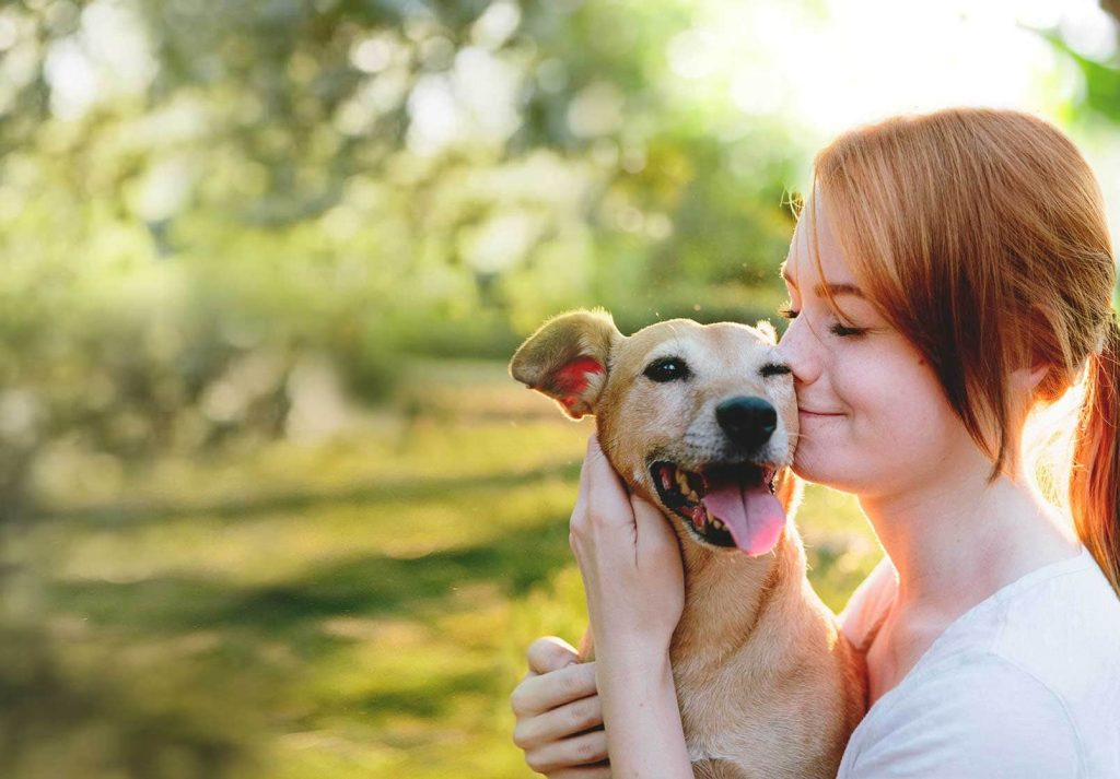 free pet insurance for low income families