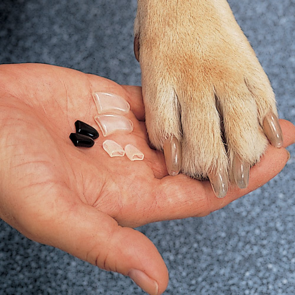 15 Best Nail Grinders For Dogs 2019 Reviews Guide Rowbite