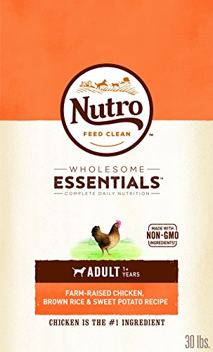 20 Best Dog Food for Sensitive Stomach and Diarrhea in 2019 - Nutro Wholesome Essentials- Dry Dog Food