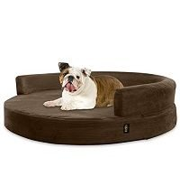 top rated orthopedic dog beds